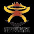 Logo Conseil Régional Handisport Midi Pyrénées